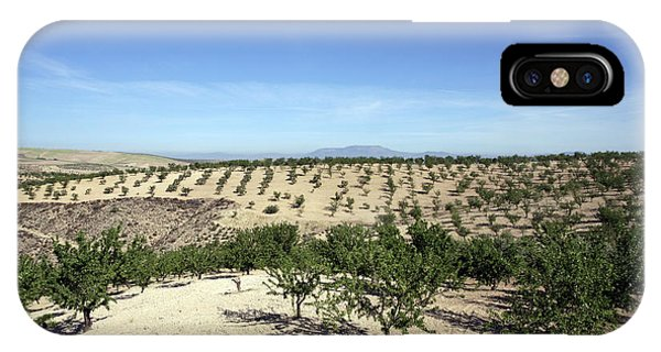Almond Plantation IPhone Case