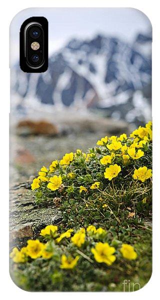 Rocky Mountain iPhone Case - Alpine Meadow  by Elena Elisseeva