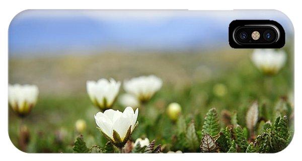 Rocky Mountain iPhone Case - Alpine Meadow In Jasper National Park by Elena Elisseeva