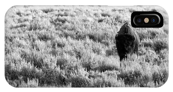American Bison In Black And White IPhone Case