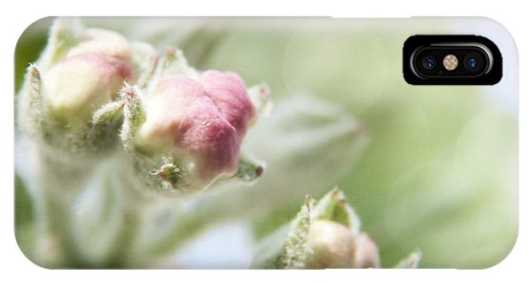 Apple Tree Blossom IPhone Case