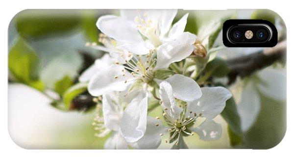 Apple Tree Flowers IPhone Case