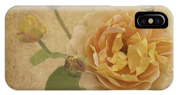 Apricot Bliss IPhone Case