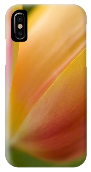 Tulip iPhone Case - April Grace by Mike Reid