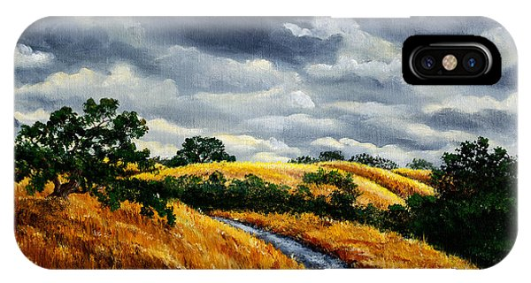 Stanford iPhone Case - Arastradero Trail In Early Autumn by Laura Iverson