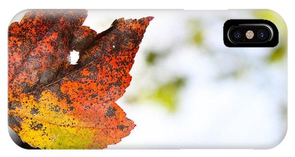Artsy-fartsy Autumn I IPhone Case