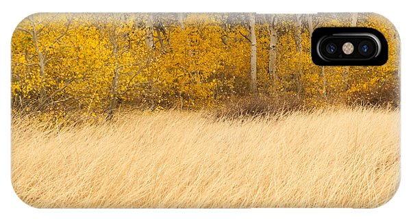 Aspen And Grass IPhone Case