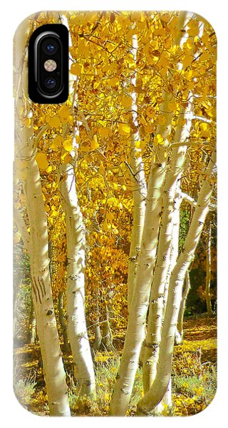 Aspen Claws IPhone Case