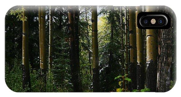 Aspens Banff National Park IPhone Case
