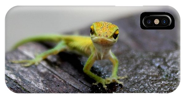 Attitudinous Anole IPhone Case