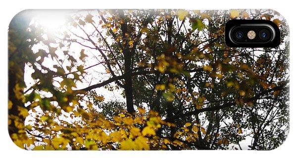 Autumn 2 IPhone Case