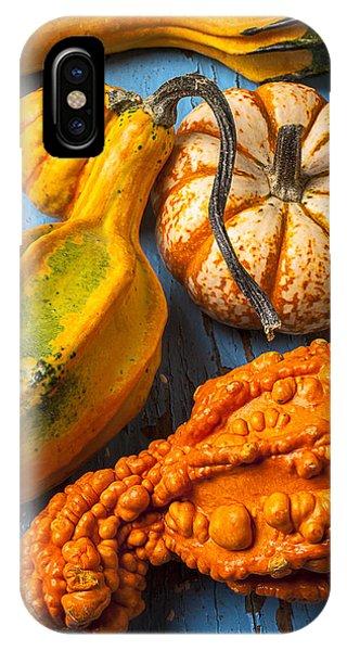 Autumn Gourds Still Life IPhone Case