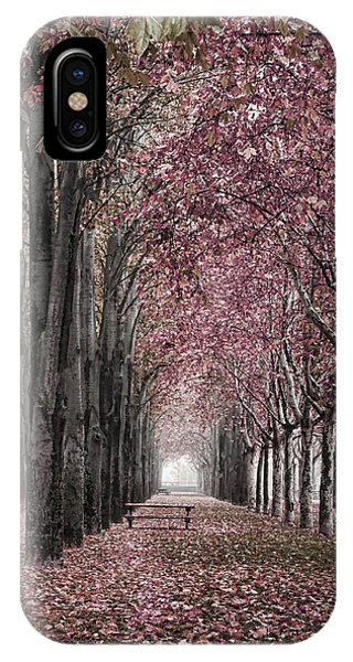 Autumn In The Grove IPhone Case