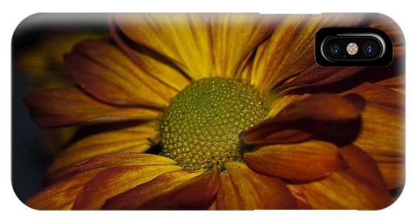 IPhone Case featuring the photograph Autumn Mum by Judy Hall-Folde