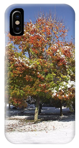 Autumn Snow IPhone Case