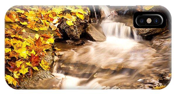 Autumn Stream No 1 IPhone Case