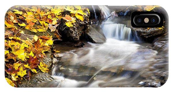 Autumn Stream No 3 IPhone Case