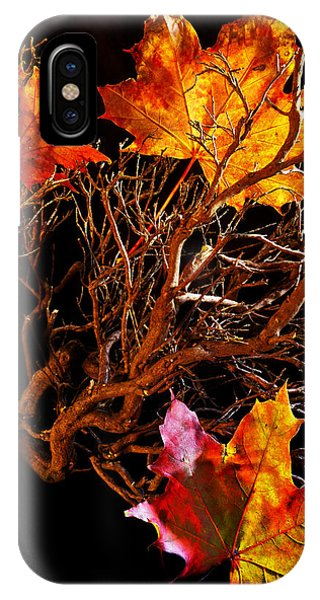 Autumnal Feelings IPhone Case