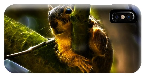 Awww Shucks- Fractal - Robbie The Squirrel IPhone Case