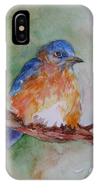 Baby Blue Bird IPhone Case