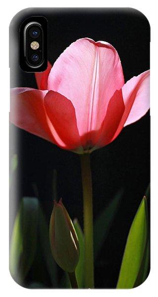 Back Lite Tulip IPhone Case