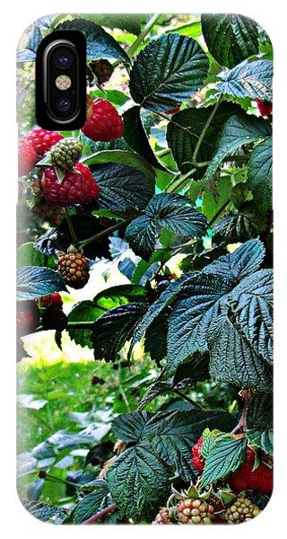 Backyard Berries IPhone Case