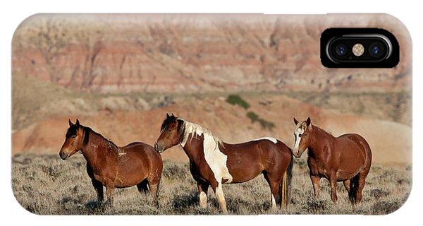 Badland Mustangs IPhone Case