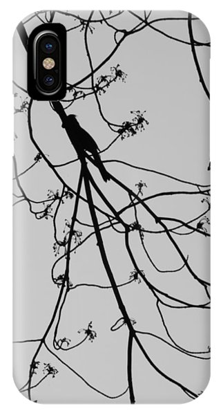 Balanced Behavior IPhone Case