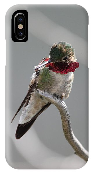 Balancing Act IPhone Case