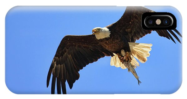 Bald Eagle Catch IPhone Case