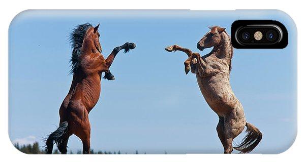 Balttling Stallions IPhone Case