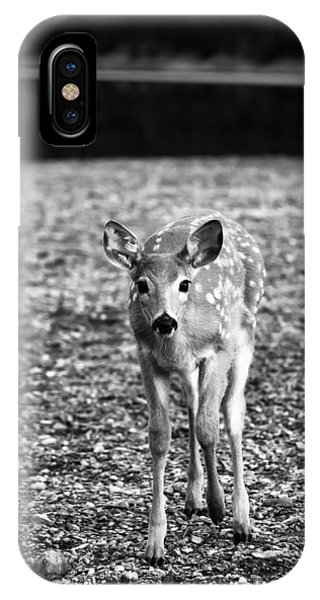 Bambi In Black And White IPhone Case