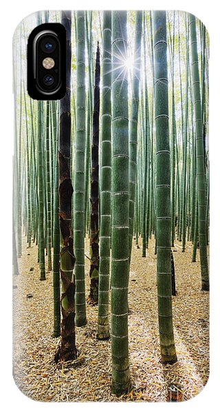 Bamboo Forest Phone Case by Jeremy Woodhouse