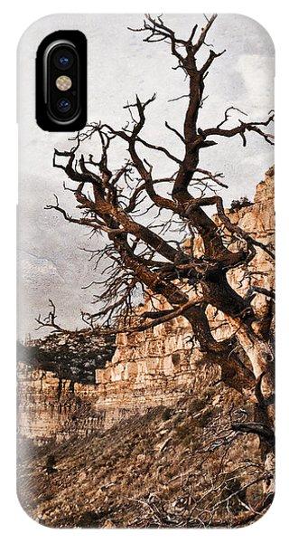Barren Mesa Verde IPhone Case