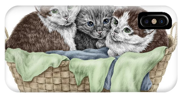 Basket Of Kittens - Cats Art Print Color Tinted IPhone Case