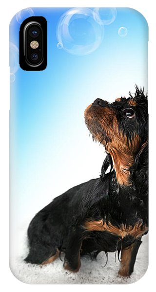 King Charles iPhone Case - Bathtime Fun by Jane Rix