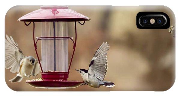 Beautiful Birds IPhone Case