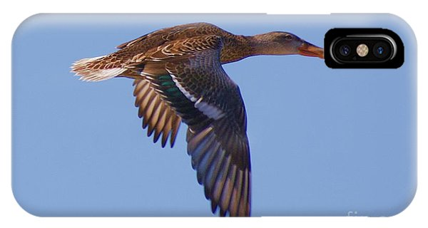Beautiful Duck Flying IPhone Case