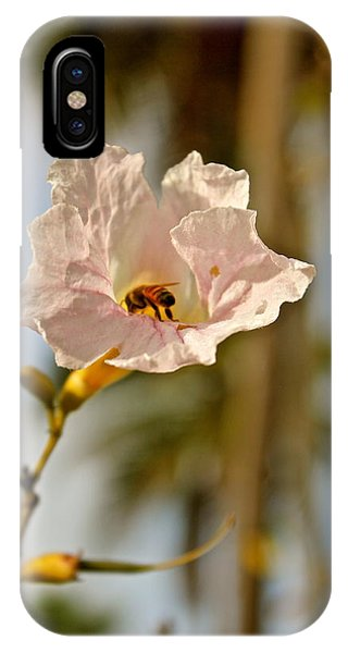 Bee In Paradise IPhone Case