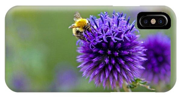 Bee On Garden Flower IPhone Case