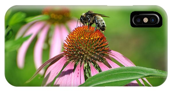 Bee On Pink Flower IPhone Case