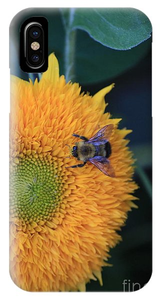 Bee On Teddybear Sunflower 2012 Phone Case by Marjorie Imbeau