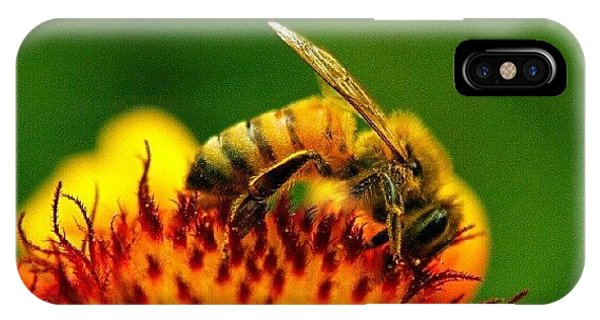 Cause iPhone Case - Beeber by Nate Doran
