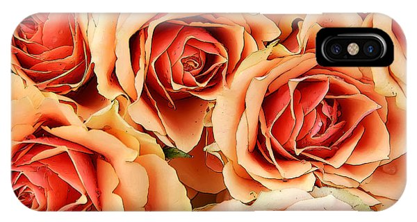 Bergen Roses IPhone Case