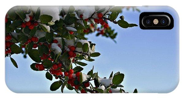 Berries In Snow IPhone Case