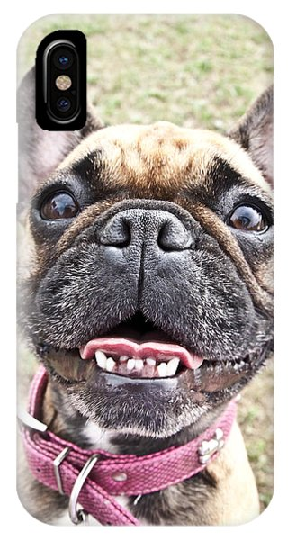 French Bull Dog iPhone Case - Best Friend by Jeannette Hunt