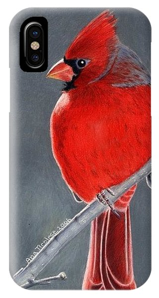 Big Red Northern Cardinal IPhone Case