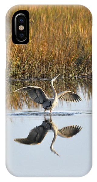 Bird Dance IPhone Case