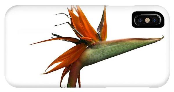 Bird Of Paradise Flower Phone Case by Victor De Schwanberg