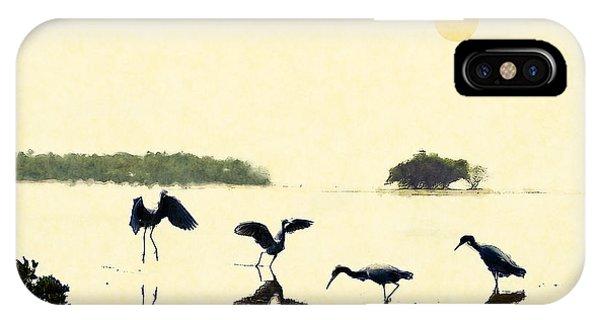 birds feeding in the Everglades IPhone Case